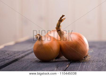 Tree Golden Raw Onions