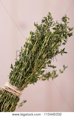 Rosemary Herbal Ingredient