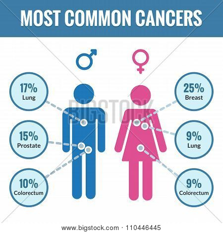 Male And Female Cancer Infographics