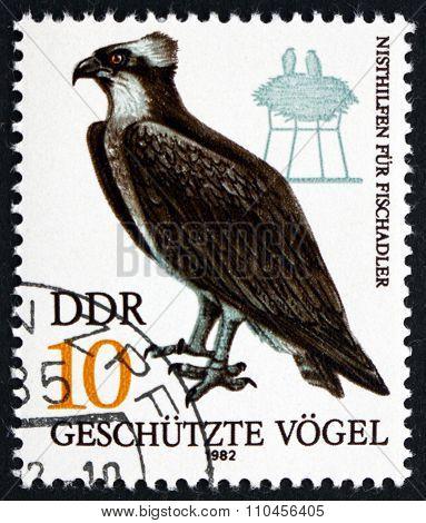 Postage Stamp Germany 1984 Fish Hawk, Bird Of Prey