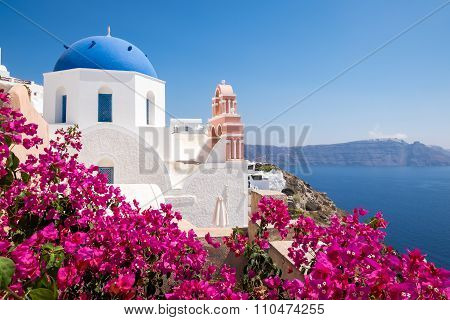 Scenic View Of Traditional Cycladic Houses With Flowers In Foreground