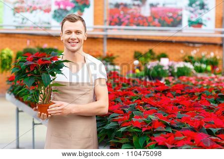 Smiling florist holding a plant.