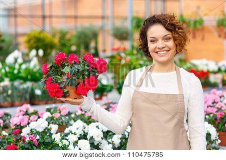 Cheerful florist presenting a flower.