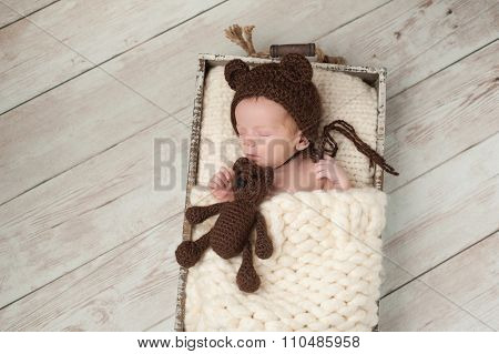 Newborn Baby Boy With Bear Hat And Stuffed Bear Toy
