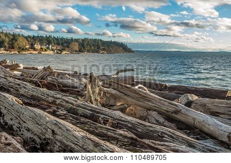 Pacific Northwest Shoreline