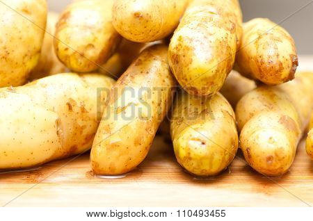 Non Gmo Fingerling Potatoes