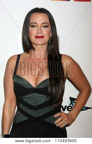 LOS ANGELES - DEC 3:  Kyle Richards at theThe Real Housewives of Beverly Hills Premiere Red Carpet 2015 at the W Hotel Hollywood on December 3, 2015 in Los Angeles, CA