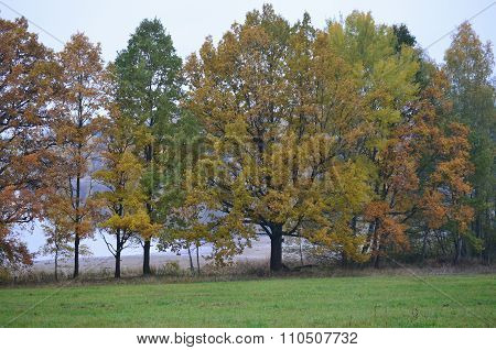 View Autumn Landscape, Southern Bohemia, Czech Republic