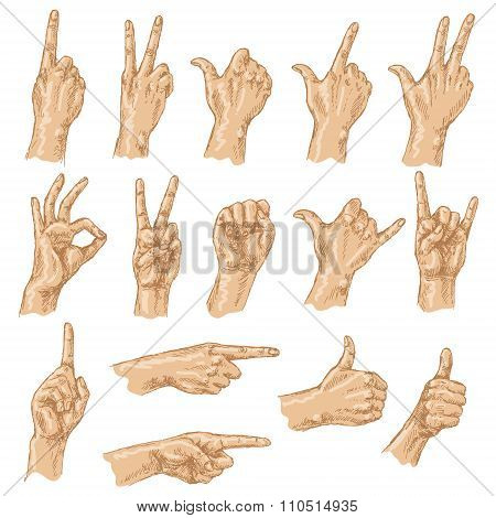 Colored Sketch Of Hand Gestures.