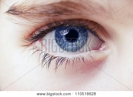 an insightful look on blue colored eyes