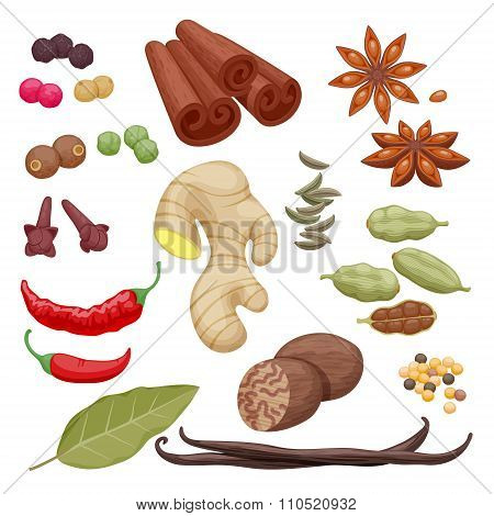 Spices and herbs icons set illustration.