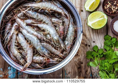 Whole Fresh Raw Shrimps Seafood