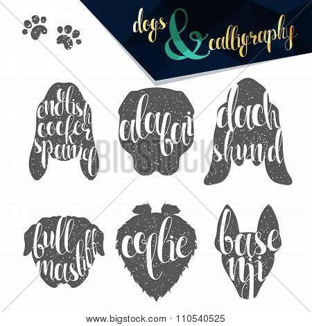 Set names of dog breeds in calligraphy handmade design