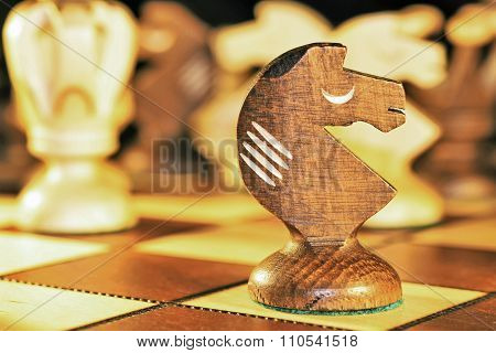Chess piece -- the knight