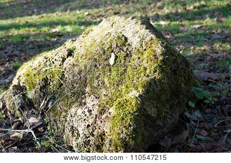 Large Stone Mossy Boulder At  Forest Lawn