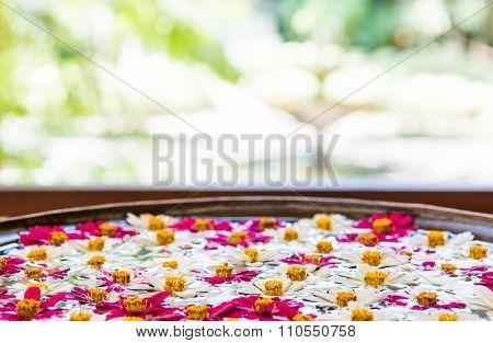 Flowers floating in water.