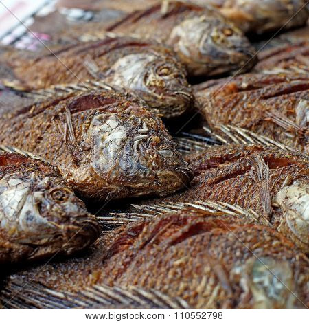 Fried Nile Tilapia Or Oreochromis Nilotica Fish