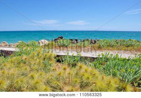 Breakwater in the Dunes