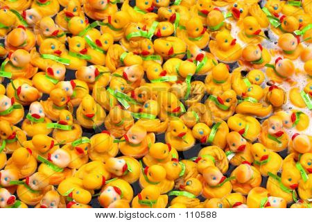 Rubber Ducky Crowd