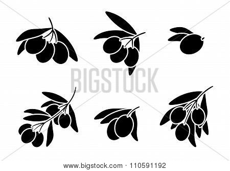 Olives on branch silhouettes vector set