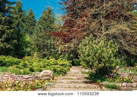 Stone pathway in garden park. Garden design