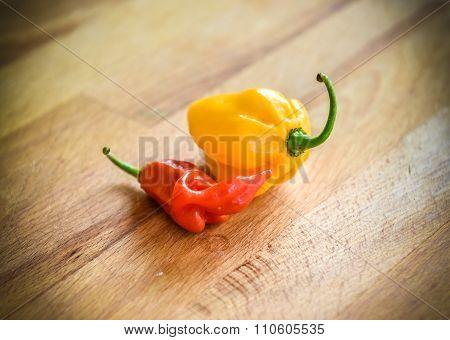 Yellow Orange And Red Lantern Hot Ripe Habanero Chili Pepper