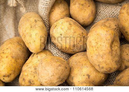 Potatoes in rustic burlap sack
