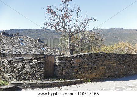 Landscape Of Campillo De Ranas