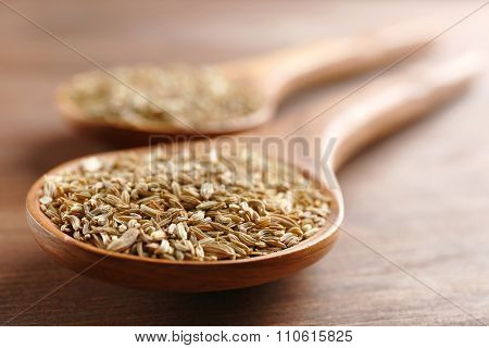 Cumin in wooden spoon on the table, close-up