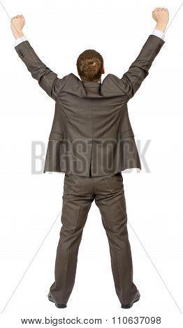 Businessman standing in winnig posture, rear view
