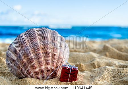Seashell With Gift On The Sandy Beach