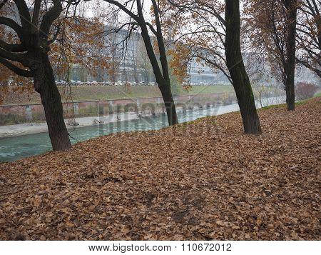 Dora River Banks