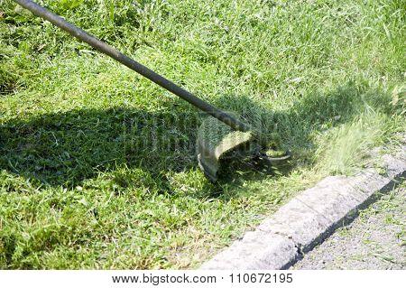 Machine Mowing Grass