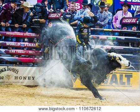 Pbr Bull Riding World Finals