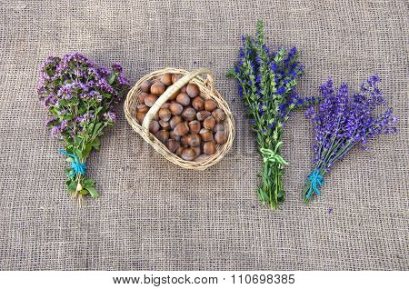 Selection Of Herbs And Hazelnuts On Linen Background