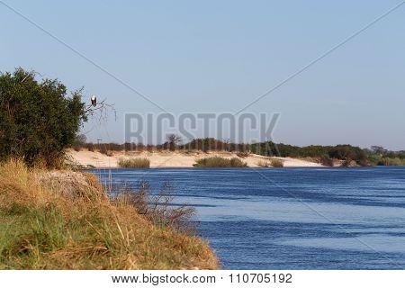 Bank Of The River Zambezi