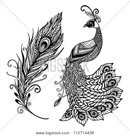 Peacock feather design black doodle  print