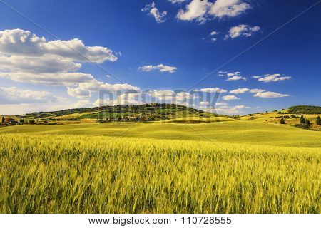 Tuscany Spring, Pienza Medieval Village And Wheat. Siena, Italy