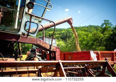 Industrial Combine Harvester Unloads Wheat Grain In Tractor Trailer