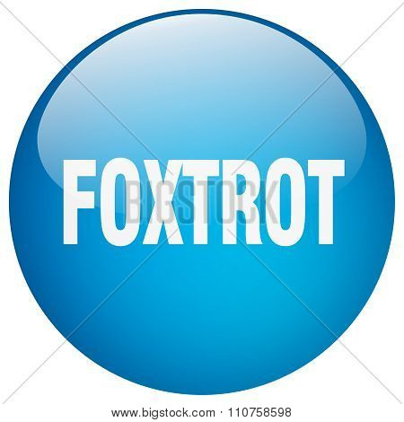 Foxtrot Blue Round Gel Isolated Push Button