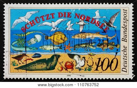 Postage Stamp Germany 1990 North Sea Fauna