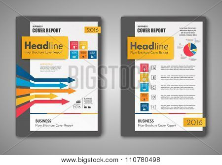 Vector Brochure Flyer Design