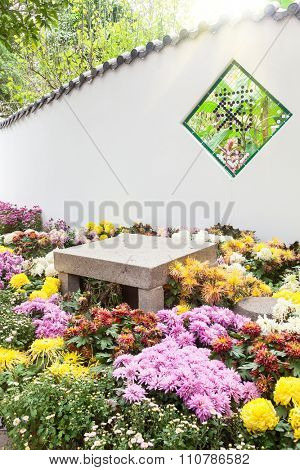 The Colorful chrysanthemums flowerbed with the stone table and seat  in a garden,the symbol on window means