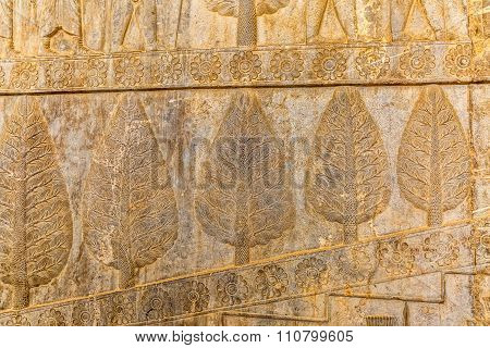 Wall relief in Persepolis