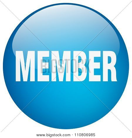 Member Blue Round Gel Isolated Push Button