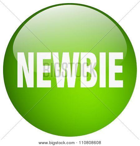 Newbie Green Round Gel Isolated Push Button