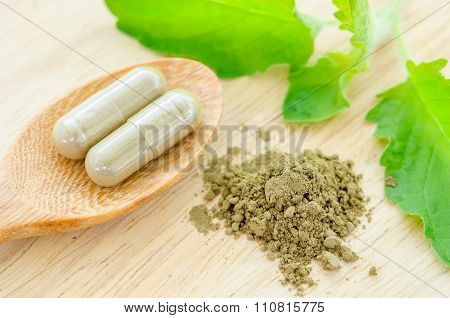 Herbal Medicine Powder And Capsules With Green Organic Herb Leaves.