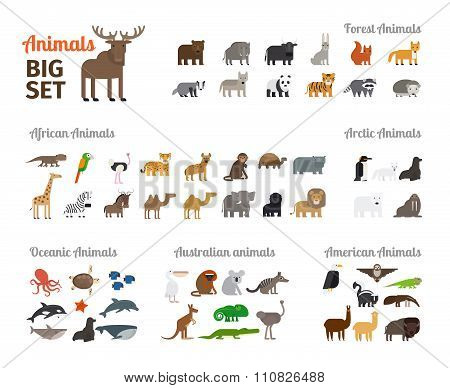 Animals in flat style