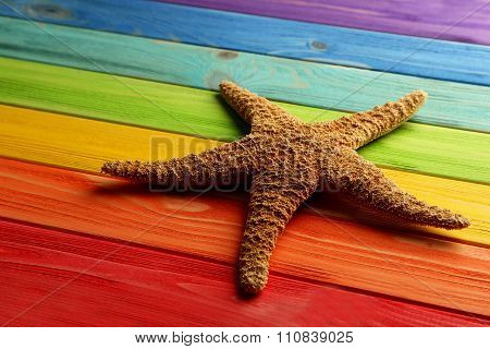 Starfish On A Colorful Wooden Table