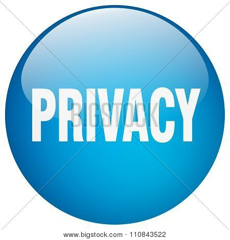 Privacy Blue Round Gel Isolated Push Button